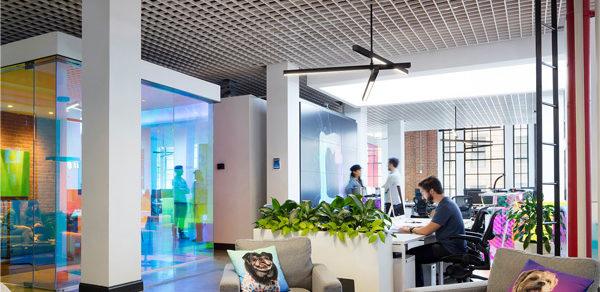 Playful, Eclectic Illumination for a Creative Brand Headquarters